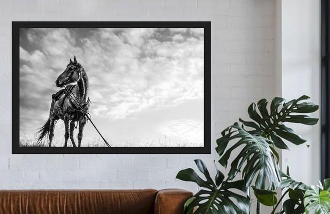 WHITE_WALL_LOUNGE_JIMMYS_HORSE.jpg