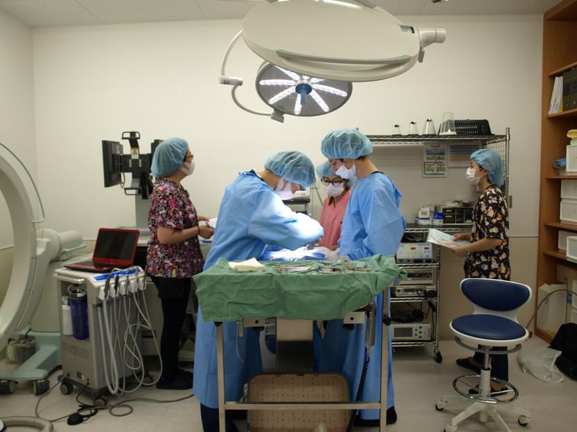やさか動物病院 手術室