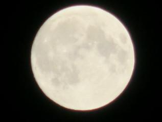 明日27日は満月です♪お財布フリフリしましょ… 占いハウス曼荼羅屋