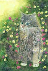 181 - Hippie, Bohemia, Love, Cat