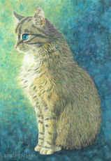 183 - A Mysterious Golden Hair Cat