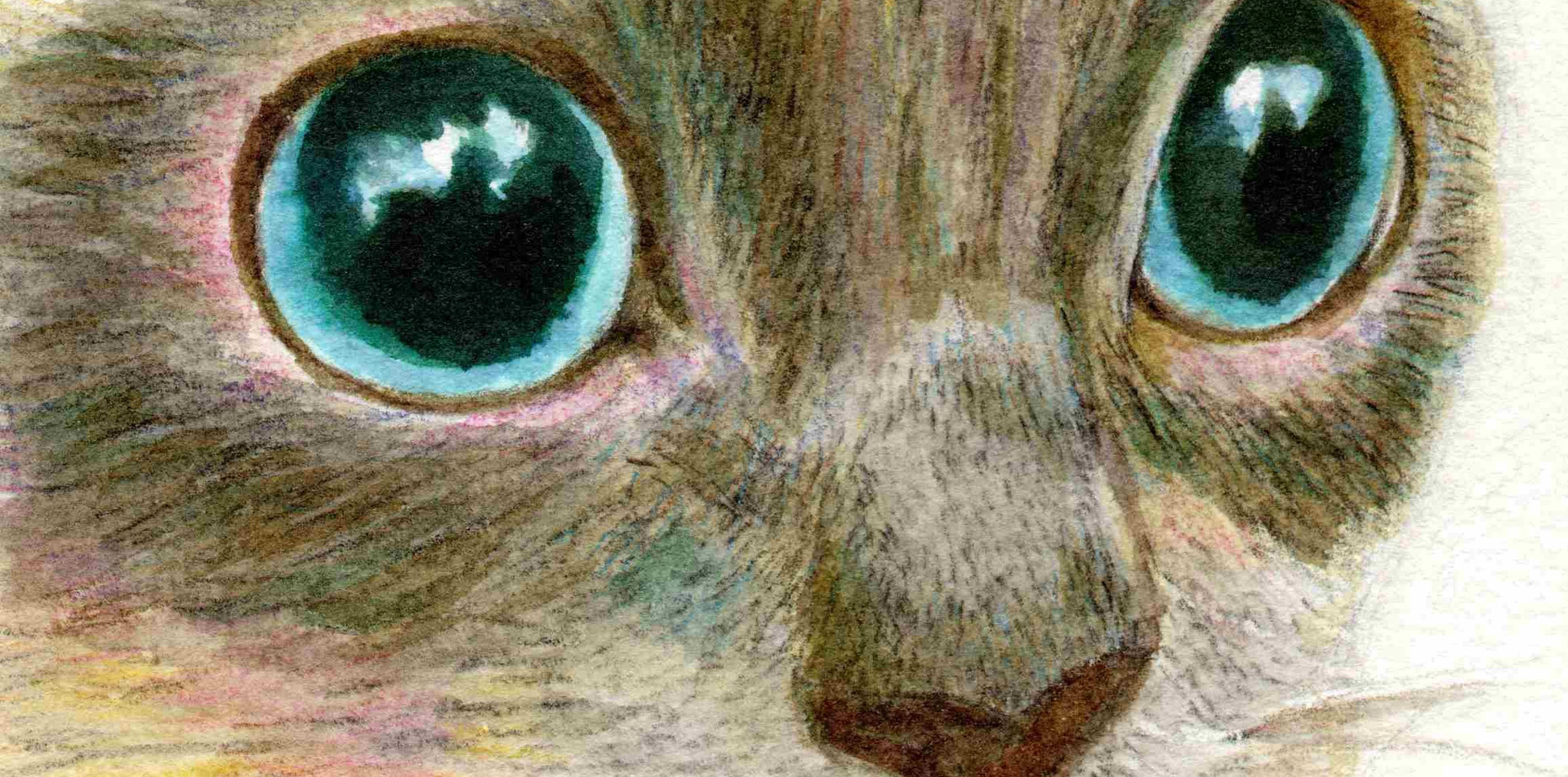 110 - The Face Of A Siamese Cat