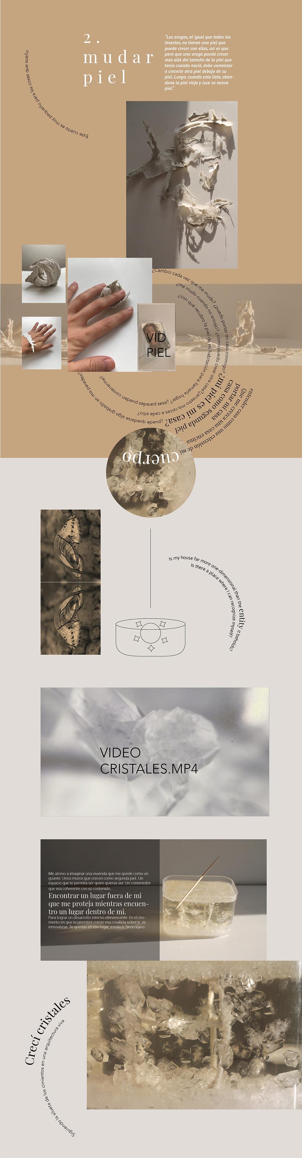 diseño2-01.jpg
