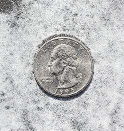 Salt T 003.jpg