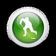 ice hockey orb.png