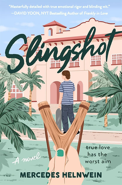 slingshot book.jpg