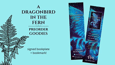 a dragonbird pre.jpg
