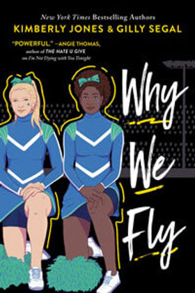 Why-We-Fly book.jpg