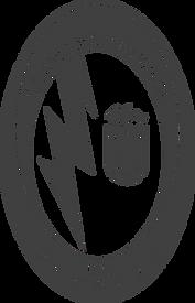 logo rayo gris.png