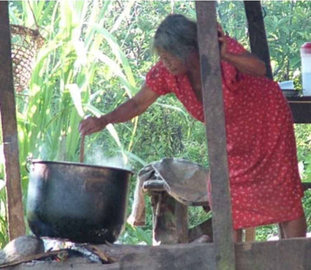 The oldest of the wives of the shaman Vicente Júa while preparing Ayahuasca. She was also a shaman. The use of this brew, unlike Western utilitarian and narcissistic drugs, involves many sacrifices and discipline.