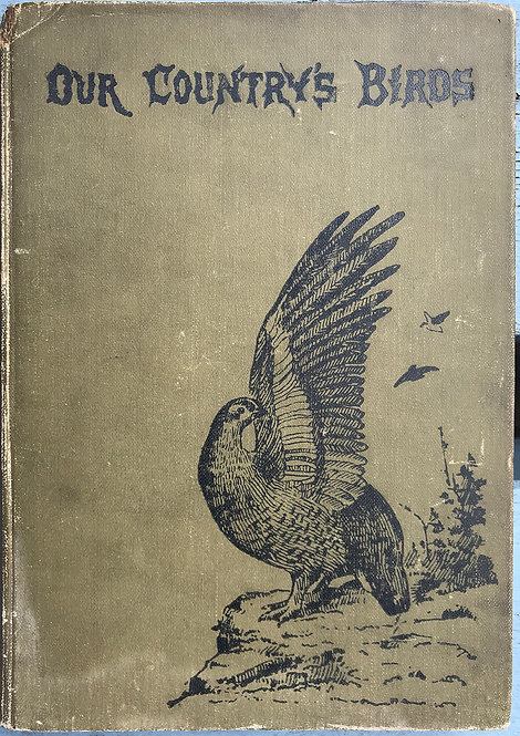 Our Country's Birds, and how to know them WJ Gordon