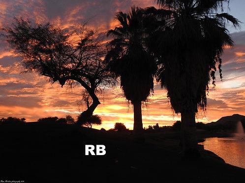 The Golden Sunrise Series (2)