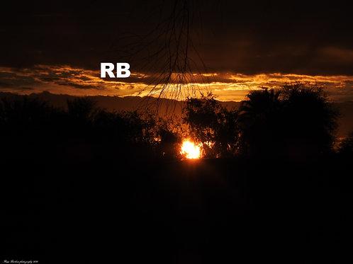The Golden Sunrise Series (8)