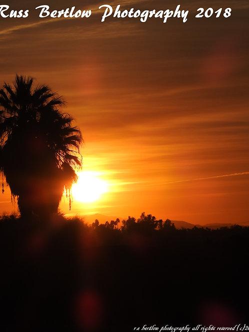 At first palms light