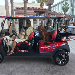 The Dog Pound Crew Downtown Palm Springs