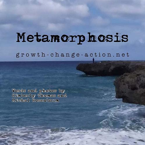 Metamorphosis 2020