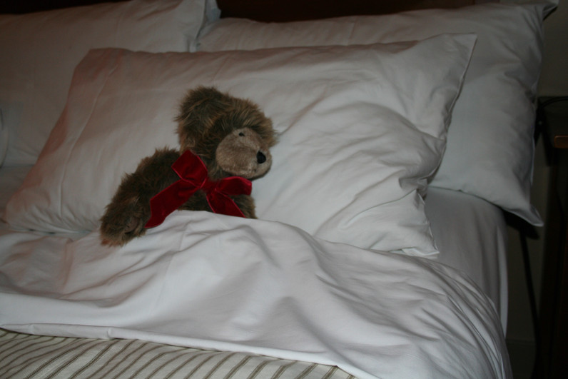 After his long flight to New Zealand Stowie hits the sheets