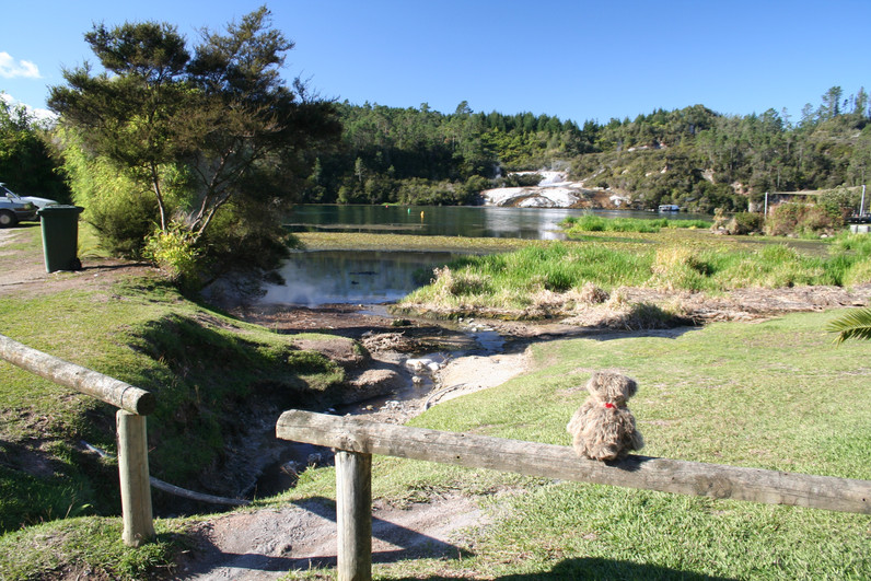 Visiting the spectacular geothermals of Rotorua