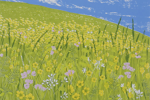 Saxifrage Meadow