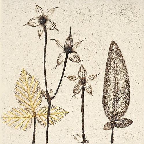 10cm Botanical Tile with 24ct Gold Leaf.  2/12