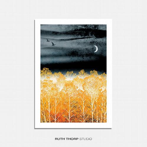Night Light by Ruth Thorp