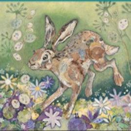 Honesty Hare