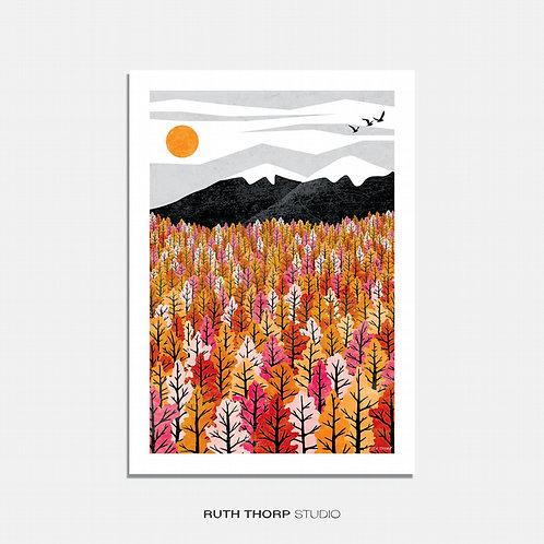 Blaze by Ruth Thorp
