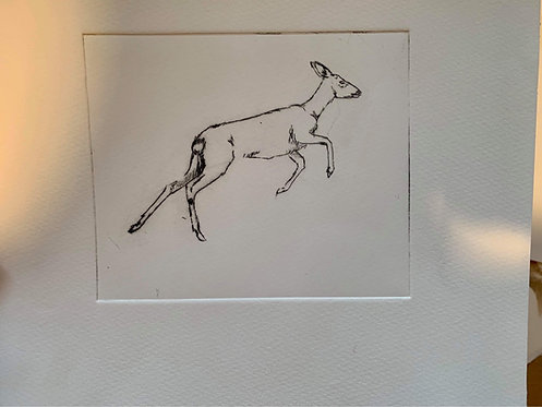 Jumping Roe Doe- Dry point print