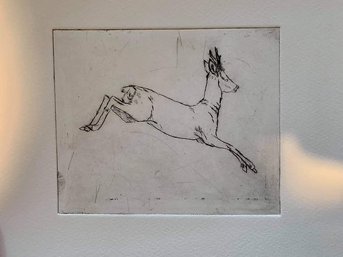 Jumping Roe - Dry Point Print