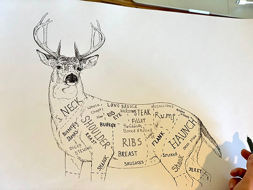 THE WHITETAIL CUTS OF VENISON