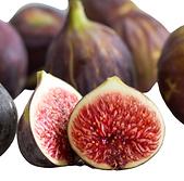 Fig_fruit.png