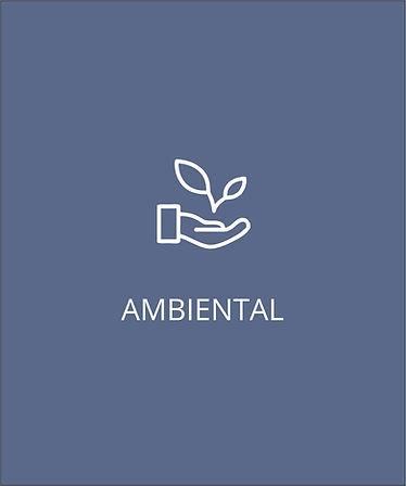 AMBIENTAL.jpg