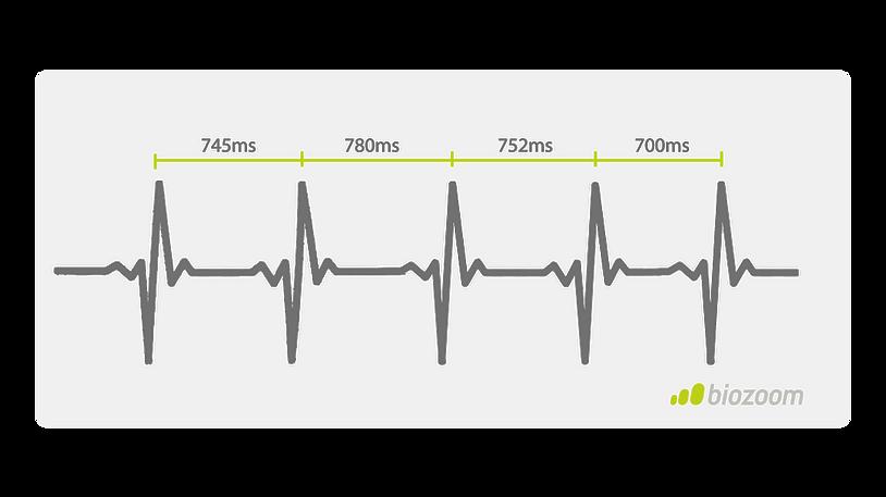 Herzratenvariability biozoom Vitalitycheck