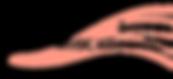 LogoDavidovPixlr2.png