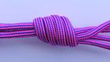 029 para 550 str neon pink.jpg