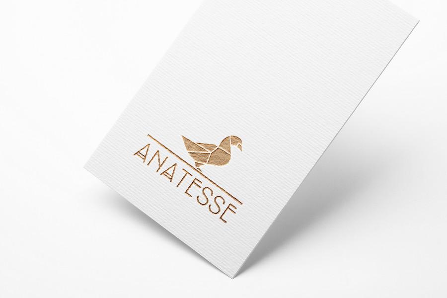 anatesse logo2.jpg