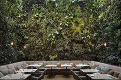 Hotel Emiliano - Restaurante