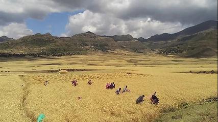 Vidéo_drone_Ethiopie_Moment.jpg