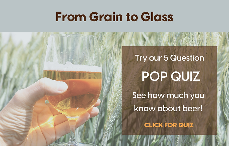 From Grain to Glass-TAKE QUIZ.png