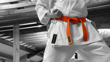 Karate Classes - 27th July 2020