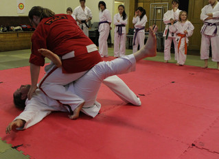 Ju jitsu cross training