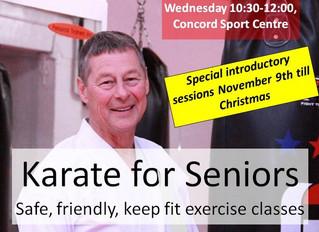 Karate for Seniors
