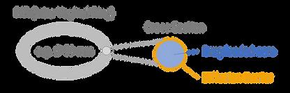 IVR intravaginal ring