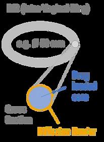 Intravaginal ring IVR NuvaRing VCM formulation screening