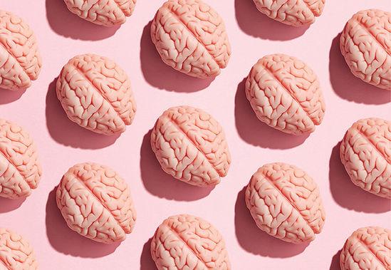 Pink-brains-illus-crop.jpg