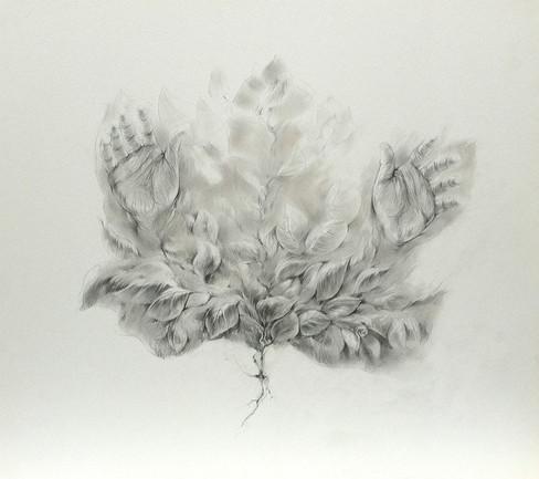 Leaf - II