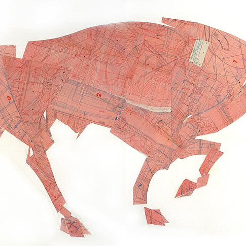 Bull-II