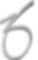 zo-logo-new.png