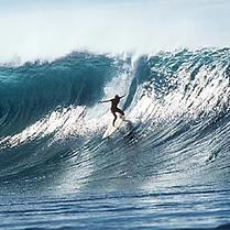 Surfline.PNG