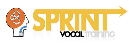 Logo SVT copia.jpg